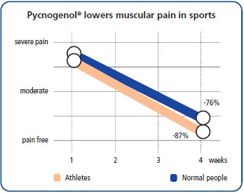 Pycnogenol dramatically reduced muscular pain